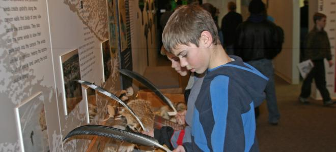 Children explore feathers at the Visitor's Center