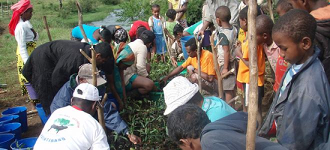 Members of a community in Madagascar plant trees