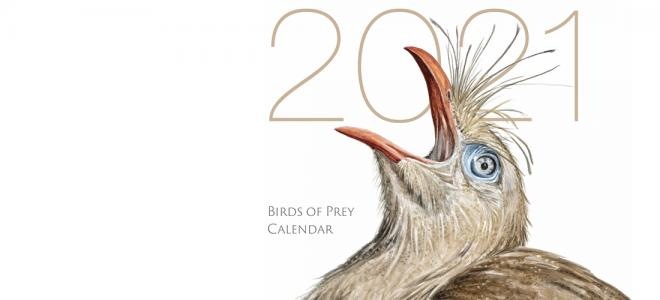 seriema painting by Ellen Wilson on cover of 2021 calendar