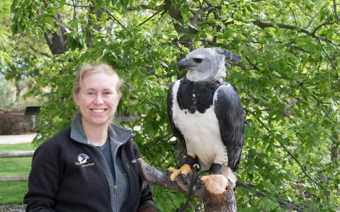Curator of Birds Monica Pittman holds Grayson the Harpy Eagle