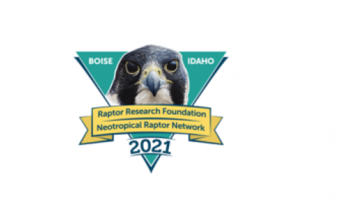 The logo of the 2021 Raptor Research Foundation Conference