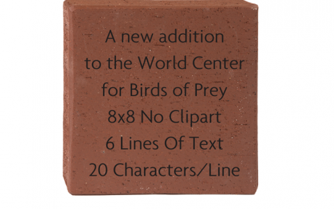 8x8 Brick with 6 lines of text 20 characters per line