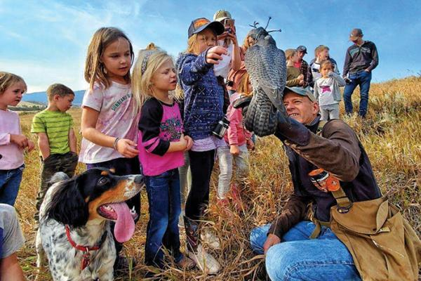 kids get close to a Peregrine Falcon on a falconer's glove