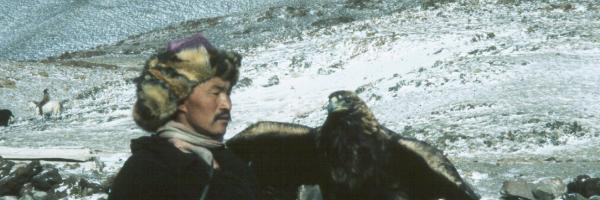 A Mongolian falconer holds a Golden Eagle on his glove.