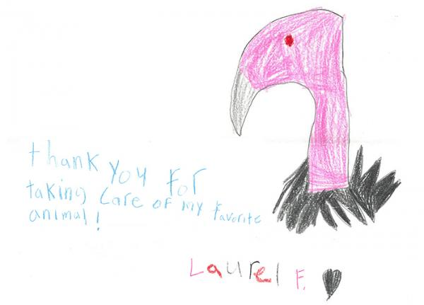 child's drawing of a California Condor