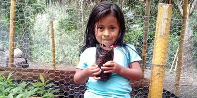 A girl holds a seedling