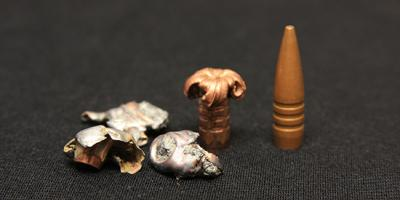 fragments of lead bullets next to intact copper bullets