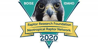 conference logo with peregrine portrait